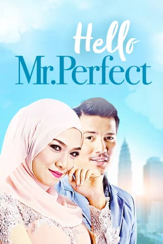 dating mr perfect